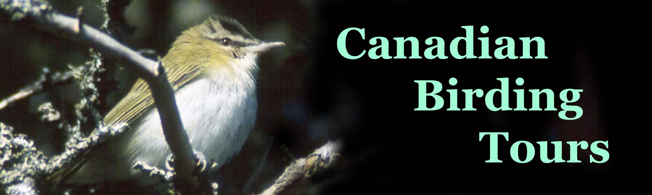 Birding Sites of Nova Scotia